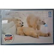 F. X. Schmid 1000 Piece Puzzle Bad Boys of the Arctic - Polar Bear Photograph