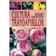 Cultura trandafirilor - Eckart Haenchen