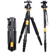 koolehaoda KQ-666 Trípode de cámara SLR Monopod y con cabeza circular para todas las cámaras y cámaras de vídeo