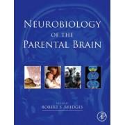 Neurobiology of the Parental Brain by Robert Bridges