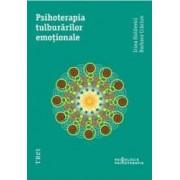 Psihoterapia Tulburarilor Emotionale - Irina Holdevici Barbara Craciun