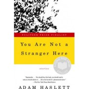 You Are Not a Stranger Here by Adam Haslett