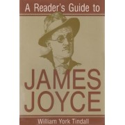 A Reader's Guide to James Joyce by William York Tindall