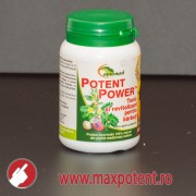 Potent Power 100 tablete