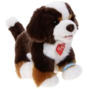 Bauer 17100 - Peluche Pia Pia Club Bernese Mountain Dog Sitting, 20 cm