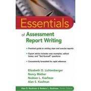 Essentials of Assessment Report Writing by Elizabeth O. Lichtenberger