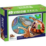 Learn About Snail Anatomy - build your own 8 inch Long Model with 32 detachable parts & stand (Age 8+)