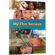 My Five Senses by Tracey Steffora
