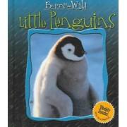 Little Penguins by Anne Jonas