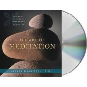 The Art of Meditation by Prof Daniel Goleman