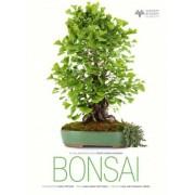 Bonsai by Anna Maria Botticelli