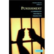 Punishment by Mr. Terance D. Miethe