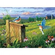 Buffalo Games Hautman Brothers: Nesting Bluebirds Jigsaw Bigjigs Puzzle ( 1000 Piece)