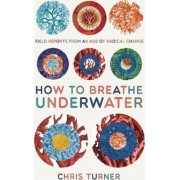 How to Breathe Underwater by Chris Turner