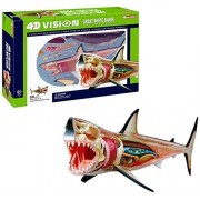 4 D Vision Great White Shark Anatomy Model, Learning Resources Anatomy Models