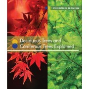 Deciduous Trees and Coniferous Trees Explained
