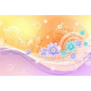 Laptop Skin Lace 071
