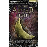 In the Afterlight by McFadden Amy Amy McFadden