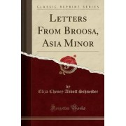 Letters from Broosa, Asia Minor (Classic Reprint) by Eliza Cheney Abbott Schneider