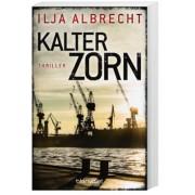 Kiran Mendelsohn Band 2: Kalter Zorn
