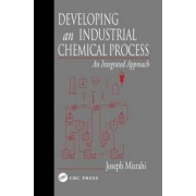 Developing an Industrial Chemical Process by Joseph Mizrahi
