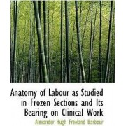 Anatomy of Labour as Studied in Frozen Sections and Its Bearing on Clinical Work by Alexander Hugh Freeland Barbour