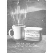 The Irish in Us by Diane Negra