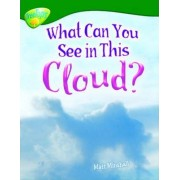 Oxford Reading Tree: Level 12: Treetops Non-Fiction: What Can You See in This Cloud? by Matt Minshall
