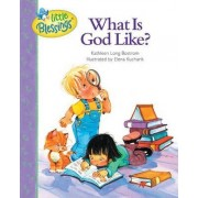What is God Like? by Kathleen Long Bostrom