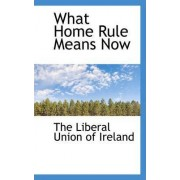 What Home Rule Means Now by The Liberal Union of Ireland
