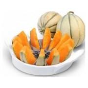 Accesoriu pentru tăiat pepene Perfect Home 12360,diametru: 19 cm