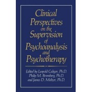 Clinical Perspectives on the Supervision of Psychoanalysis and Psychotherapy by Leopold Caligor
