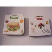 Educational Books For Kids ~ Set of 2 1st Book of Words (Toys Foods)