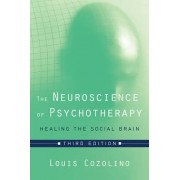 The Neuroscience of Psychotherapy Healing the Social Brain by Louis Cozolino