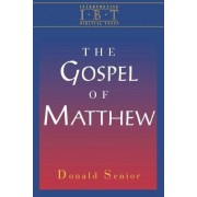 Interpreting Biblical Texts: Gospel of Matthew by Donald Senior