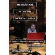 Revolution in the Age of Social Media by Senior Lecturer International Development Studies Linda Herrera