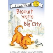 Biscuit Visits the Big City by Alyssa Capulcill