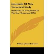 Essentials of New Testament Study by William Edensor Littlewood
