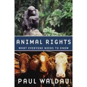 Animal Rights by President Religion and Animals Institute Paul Waldau