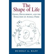 The Shape of Life by Rudolf A. Raff