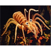 Puzzled Tarantula Wooden 3D Puzzle Construction Kit by Puzzled