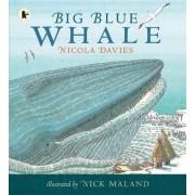 Big Blue Whale by Nicola Davies