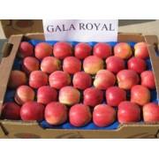 Mar Royal Gala