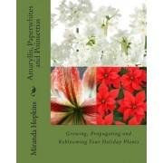 Amaryllis, Paperwhites and Poinsettias by Miranda Hopkins