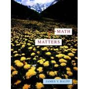 Math Matters by James V. Rauff