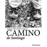 Camino de Santiago by Charl Durand