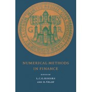 Numerical Methods in Finance by L. C. G. Rogers