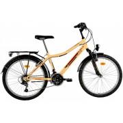 Bicicleta copii DHS Travel 2431 - model 2016