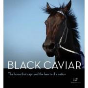 Black Caviar by Hardie Grant Books