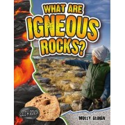 What Are Igneous Rocks? by Molly Aloian